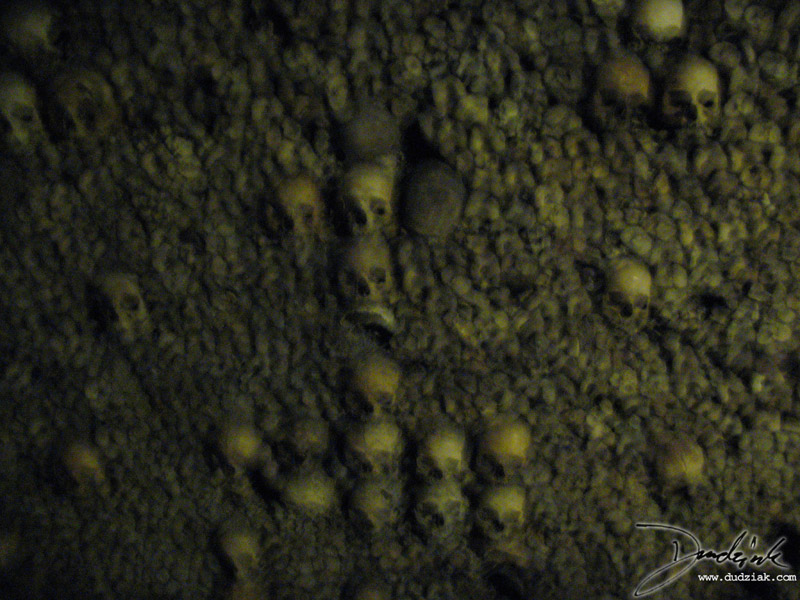 Picture of human skulls arranged in a pattern in the Paris Catacombs.