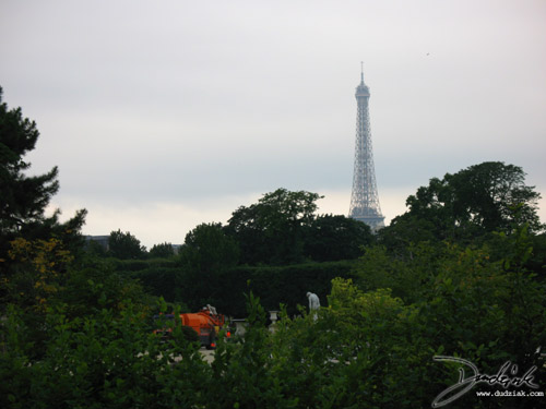 Eiffel Tower,  Jardin des Tuileries,  Tuileries Garden,  Paris France