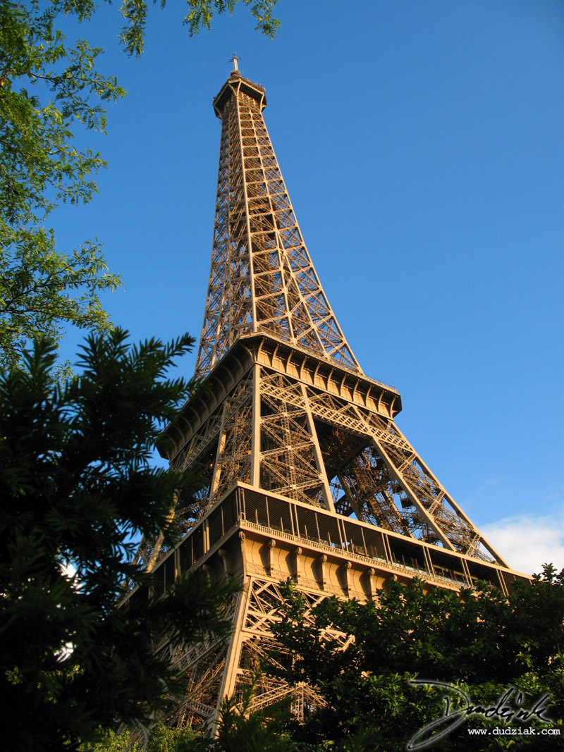 Blue Sky,  Trees,  Eiffel Tower