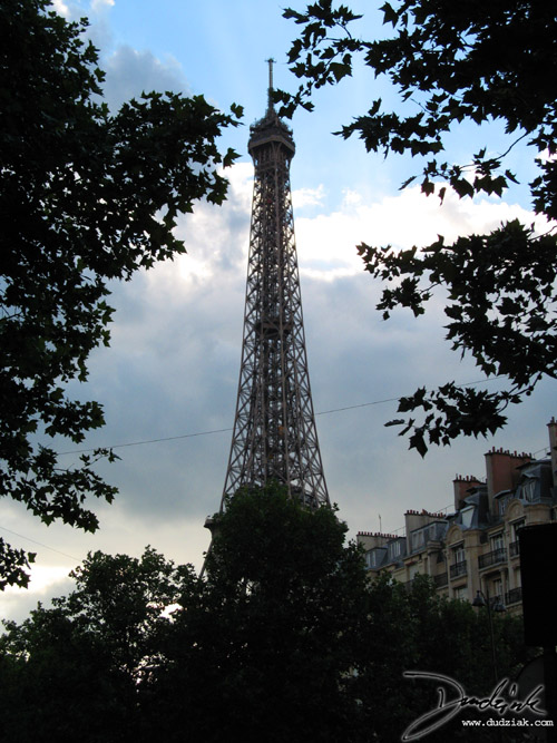 Paris France. trees,  Eiffel Tower