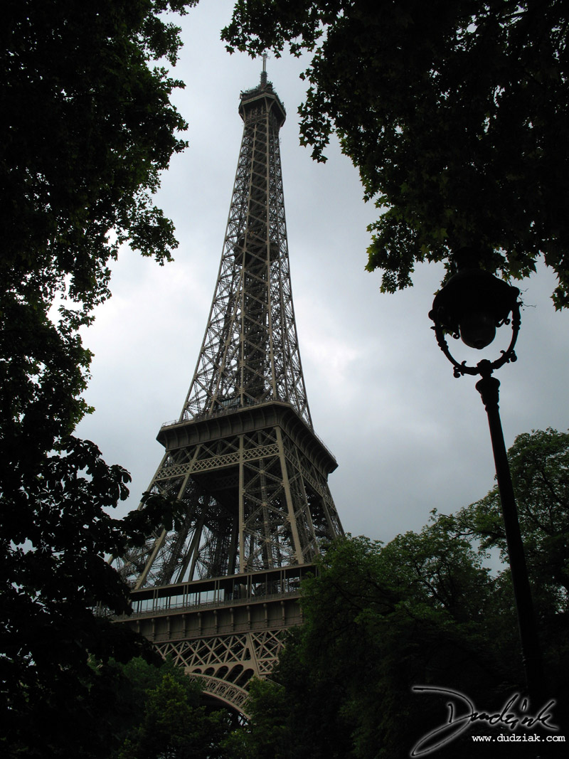 Eiffel Tower,  Paris France,  Trees