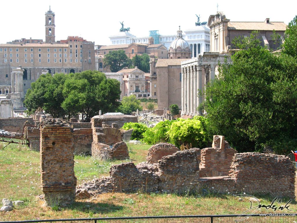 Picture of some ruins at the Roman Forum in Rome, Italy.  The Temple of Antoninus and Faustina is  covered slightly by the tree on the right.