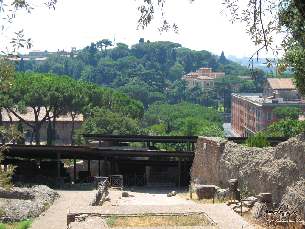 rome,  Palentine Hill,  italy,  Archaeology,  archeological excavation